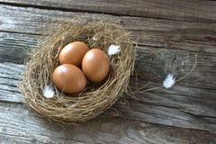 Rede med ägg Royaltyfri Fotografi