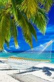 Rede na praia entre as palmeiras que negligenciam o oceano Fotografia de Stock Royalty Free