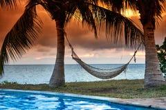 Rede no por do sol de Zanzibar Fotos de Stock