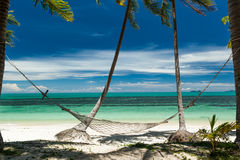 A rede pendurou entre palmeiras em uma praia tropical: Imagem de Stock