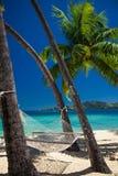 Rede vazia entre palmeiras na praia tropical Fotos de Stock Royalty Free