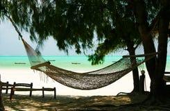 Rede vazia isolada entre árvores das coníferas, a areia branca e o fundo verde do oceano de turquesa - praia de Paje, Zanzibar fotografia de stock royalty free