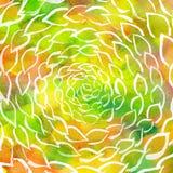 Redemoinho das folhas da aquarela colorido Imagem de Stock