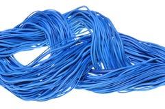 Redemoinho de cabos azuis da rede Imagens de Stock Royalty Free