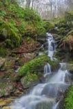 Redemoinhos da cachoeira Imagens de Stock