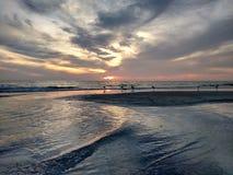 Redemoinhos das nuvens e dos pássaros da bordadura da água no por do sol em costas indianas, Florida fotografia de stock