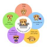 Redenen om een huisdieren vectorinfographics goed te keuren Stock Foto's