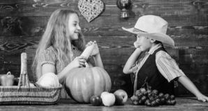Redenen waarom elk kind de landbouw zou moeten ervaren Gehouden voor dagelijkse landbouwbedrijfkarweien verantwoordelijk Het meis royalty-vrije stock fotografie