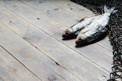 Redes de pesca e ainda-vida secada dos peixes no fundo de madeira Imagem de Stock Royalty Free