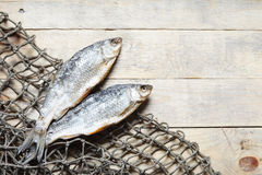 Redes de pesca e peixes secados Fotos de Stock Royalty Free