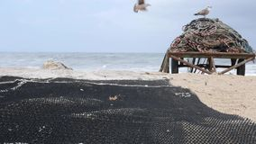 Redes de pesca que secam na doca no porto em Portugal, com as gaivotas no fundo filme