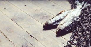 Redes de pesca y aún-vida secada de los pescados en el fondo de madera Foto de archivo libre de regalías