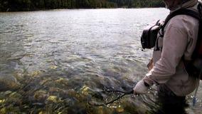 Redes del pescador una trucha marrón almacen de video