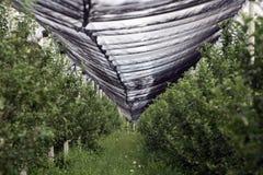 Redes protectoras de las huertas Imagen de archivo