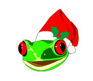 Redeyed frog wearing santa hat Royalty Free Stock Images