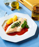 Redfish fillet Royalty Free Stock Photos