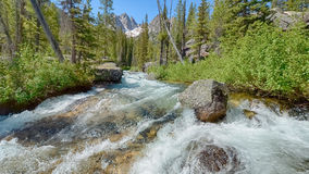 Redfish Lake Creek, Sawtooth National Recreation Area, ID Stock Photography