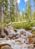 Redfish See-Nebenfluss-Steuerbares, Sägezahn-nationales Erholungsgebiet, Identifikation Lizenzfreie Stockfotos
