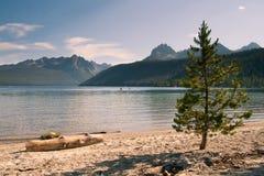 Redfish See-und Sägezahn-Berge in Idaho Lizenzfreie Stockbilder