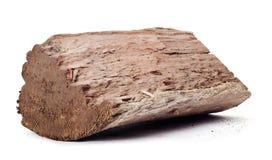 Redgum wood log Royalty Free Stock Photos