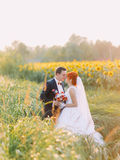 Redhair bride and handsome groom lovingly look at each other in a sunflower sunny field Royalty Free Stock Image