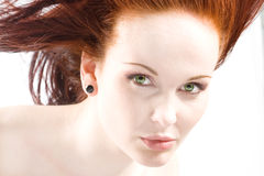 Redhead Royalty Free Stock Photography