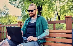 Redhead bearded hipster male using laptop in a park. Redhead bearded hipster male in a green fleece shirt using laptop in a park Stock Photography
