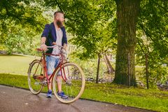 Redhead bearded male on a retro bicycle in a park. Redhead bearded hipster male on a retro bicycle in a summer park stock photography