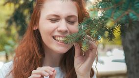 Redhead beautiful vegan girl eating pine needles stock photography