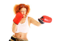 Redhead boxer Royalty Free Stock Photography