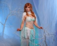 Redhead elf woman in magical forest. Elf in magical winter forest Stock Photography
