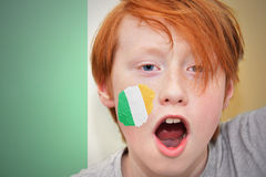 Redhead fan boy with irish flag painted on his face. On the irish flag background royalty free stock photography