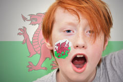 Redhead fan boy with welsh flag painted on his face. On the  welsh flag background Royalty Free Stock Images