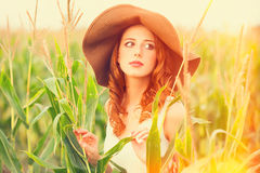 Redhead girl in corn field Royalty Free Stock Photography