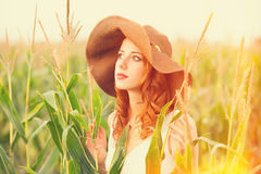 Redhead girl in corn field Stock Images