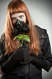 Redhead girl with plant Royalty Free Stock Photography