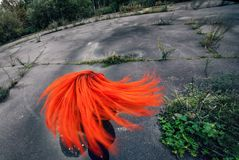 Redhead girl is turned on round asphalt sqare. Circular effect. Motion drive concept Stock Image