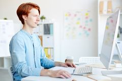 Redhead graphic designer working in office. Serious redhead male graphic designer in blue shirt working in office: he viewing online file on desktop computer royalty free stock photography