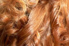 Redhead hair. Red curls royalty free stock photos