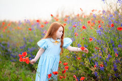 Redhead kid girl gathers a bouquet of wild flowers for mom Royalty Free Stock Images