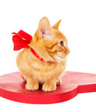 Redhead kitten with ribbon sitting on the heart Stock Photo