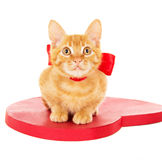 Redhead kitten sitting on the heart Royalty Free Stock Image