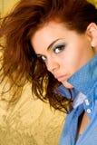 Redhead serio Fotografia Stock
