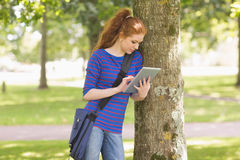 Redhead student leaning against a tree using her tablet pc Royalty Free Stock Photography