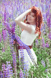 Redhead woman with long hair in lupine field Royalty Free Stock Images