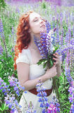 Redhead woman with long hair in lupine field Royalty Free Stock Photo