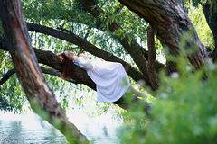 Redhead woman lying on a tree Royalty Free Stock Photography
