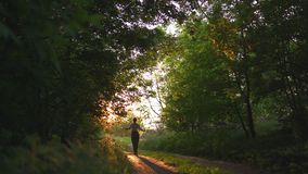 Redhead woman in pants and white shirt walking - sunset country off road with beautiful evening sun light rays, green. Sunset country off road with beautiful stock footage