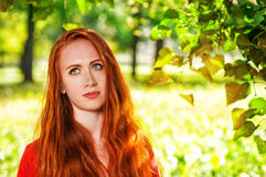 Redhead woman portrait. Portrait of redhead young woman with long hair Stock Photo