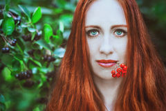 Redhead woman with red berries Stock Photography